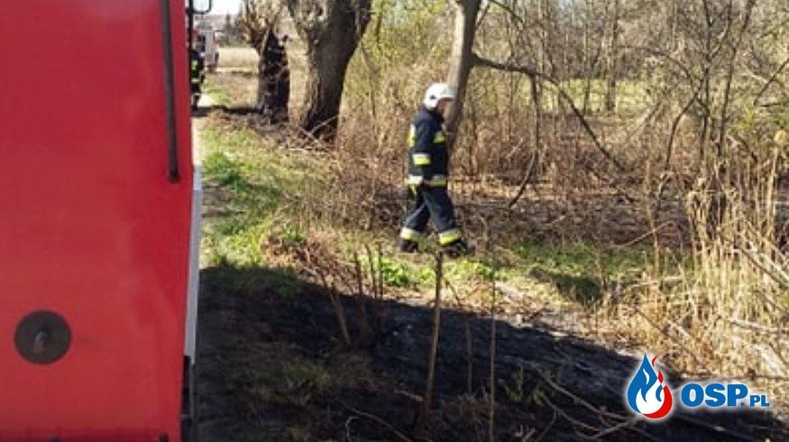 Pożar trawy w miejscowości Skrzynki OSP Ochotnicza Straż Pożarna