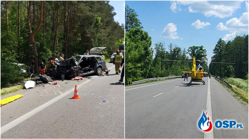 Łoś wybiegł na drogę, doszło do tragicznego wypadku. Jedna osoba nie żyje. OSP Ochotnicza Straż Pożarna