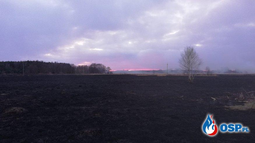 Pożar traw na nieużytkach- Łomy 25.02.2018 OSP Ochotnicza Straż Pożarna