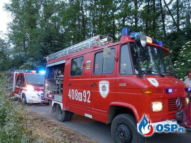 5/16 usuwanie konaru z drogi OSP Ochotnicza Straż Pożarna