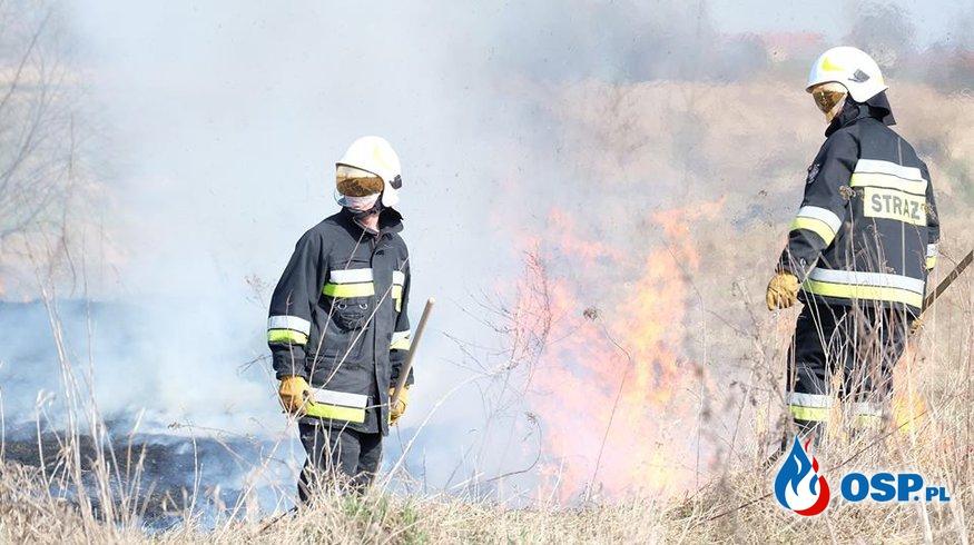 Pożar traw 29.03.2015r. OSP Ochotnicza Straż Pożarna
