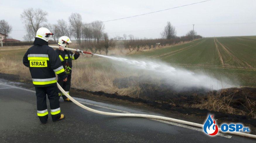 Pożar suchej trawy w Białej OSP Ochotnicza Straż Pożarna