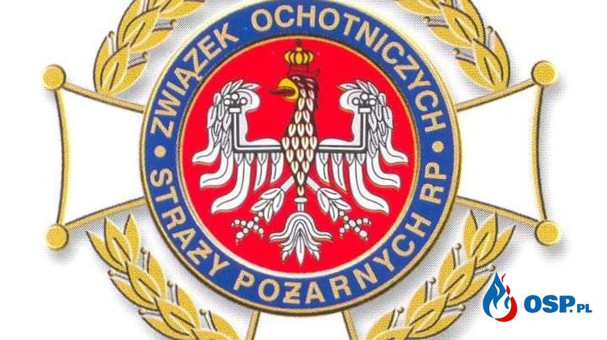 Nadzwyczajne Walne Zebranie OSP Ochotnicza Straż Pożarna