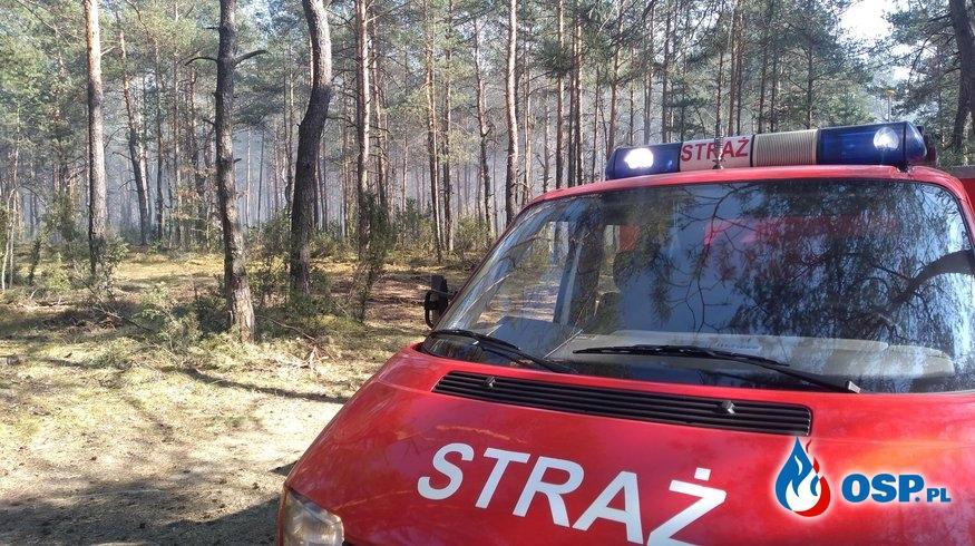 6/2020 - Pożar trawy i lasu OSP Ochotnicza Straż Pożarna