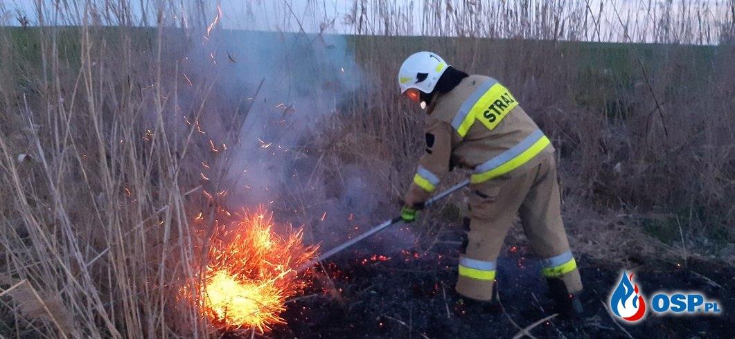 81-83/2020 10 pożarów traw w ciągu kilku godzin! OSP Ochotnicza Straż Pożarna