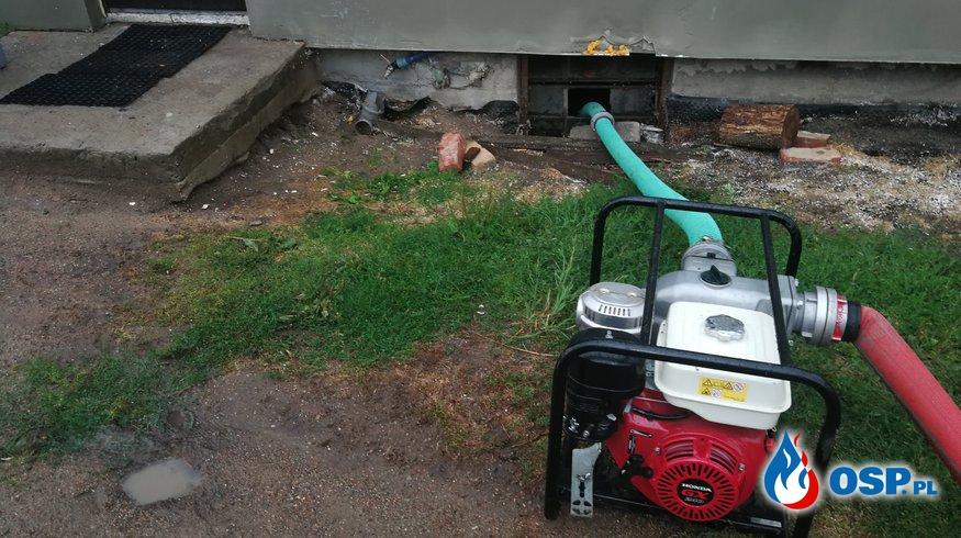 Zalany dom, zalana piwnica oraz powalone drzewo OSP Ochotnicza Straż Pożarna
