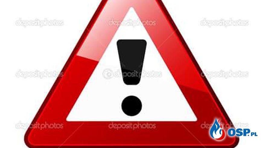 Rębusz-Pławno gałęzie na jezdni 17-06-2016r OSP Ochotnicza Straż Pożarna