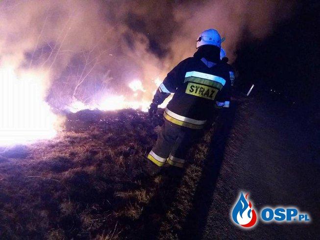 Pożar Traw ( Droga Wojewódzka nr 139) OSP Ochotnicza Straż Pożarna