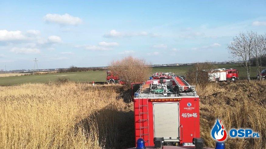 Pożar trzcin OSP Ochotnicza Straż Pożarna
