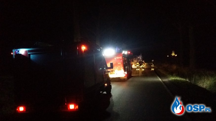 Złamane konary drzewa na trasie Biała – Solec OSP Ochotnicza Straż Pożarna