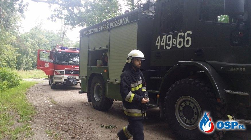 Usuwanie zwału drzewa OSP Ochotnicza Straż Pożarna