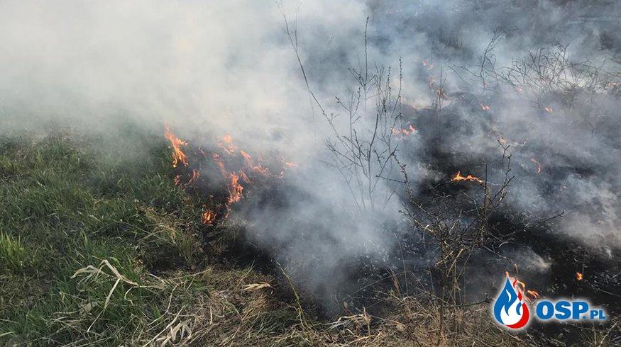 Pożar traw!  OSP Ochotnicza Straż Pożarna