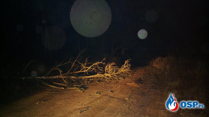 Akcja 9/2015 - Przewrócone drzewo w miejscowości Baczki OSP Ochotnicza Straż Pożarna