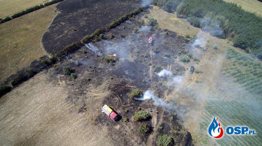 !!! Pożar Lasu i Zboża  !!! OSP Ochotnicza Straż Pożarna