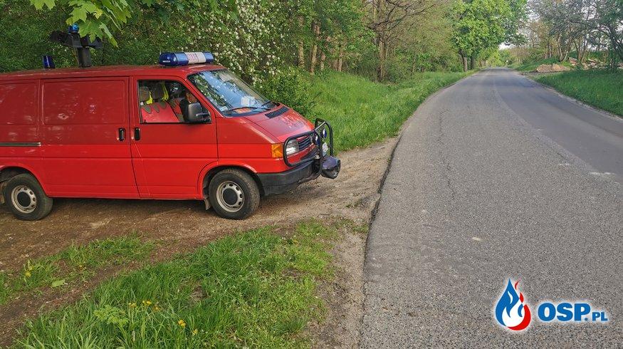 Ranna sarna przy drodze OSP Ochotnicza Straż Pożarna