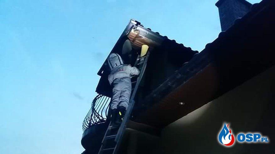 Usuwanie gniazda szerszeni z domu jednorodzinnego w Biertowicach OSP Ochotnicza Straż Pożarna