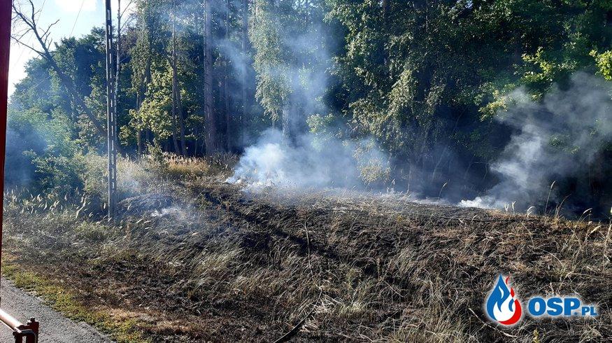 156/2020 Pożar nieużytków przy drodze OSP Ochotnicza Straż Pożarna