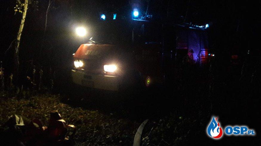Pożar poszycia leśnego w Lubaszowej OSP Ochotnicza Straż Pożarna