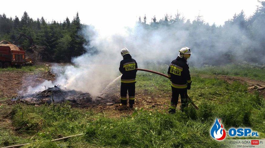 Chrośnica: Pożar w lesie. OSP Ochotnicza Straż Pożarna