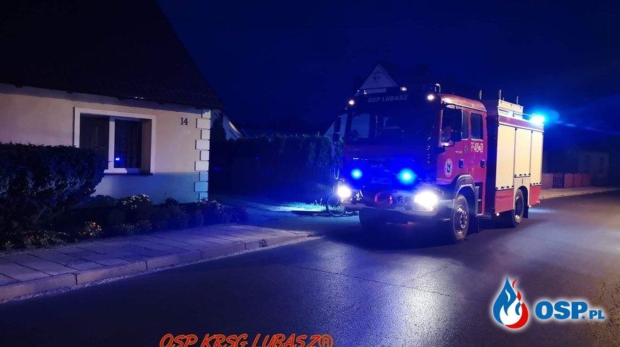 Owady błonkoskrzydłe OSP Ochotnicza Straż Pożarna