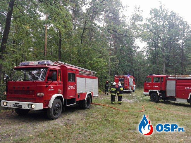 """Ćwiczenia - """"Pożar Lasu"""" OSP Ochotnicza Straż Pożarna"""