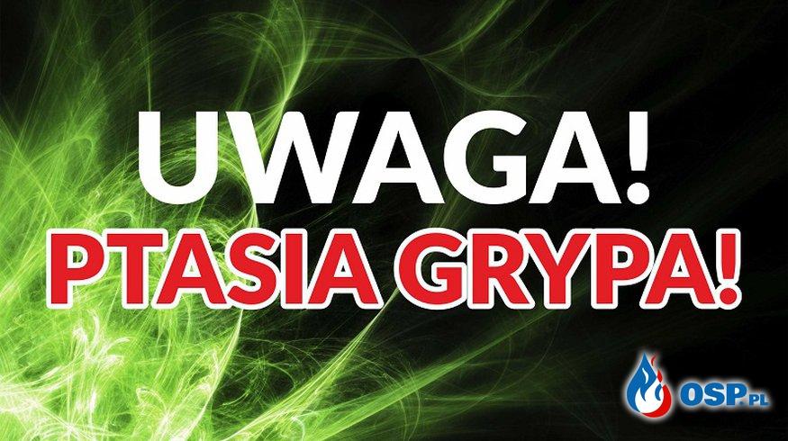 UWAGA Ptasia grypa w gminie Wiskitki OSP Ochotnicza Straż Pożarna