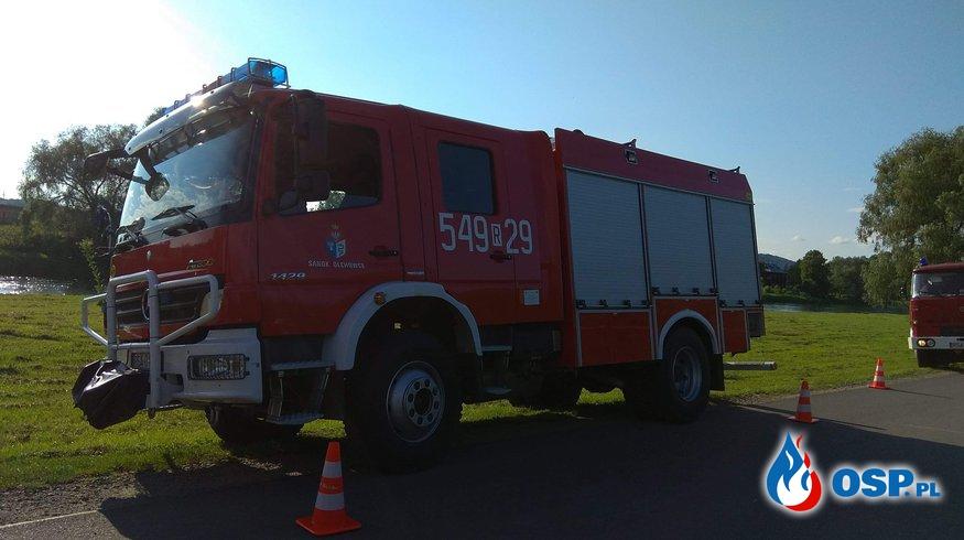Pożar lasu. W akcji kilkanaście zastępów straży pożarnej OSP Ochotnicza Straż Pożarna