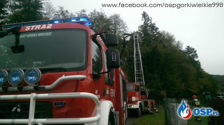 Uszkodzone drzewa OSP Ochotnicza Straż Pożarna