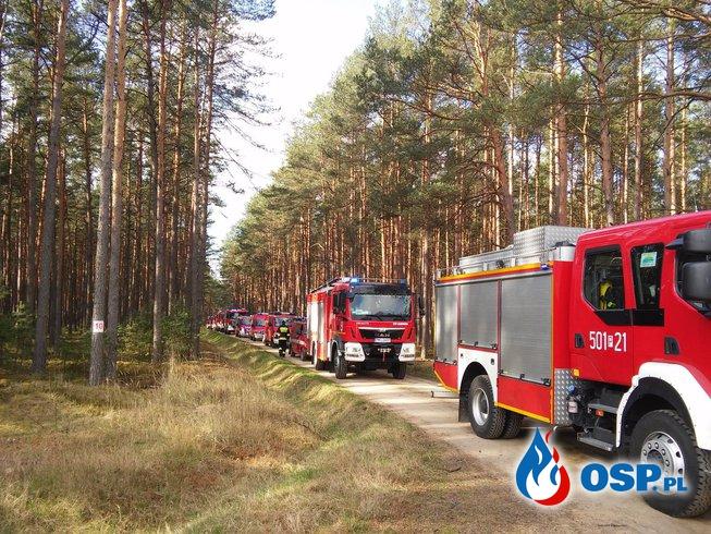 """Manewry pożarnicze """" LAS 2016 """" OSP Ochotnicza Straż Pożarna"""