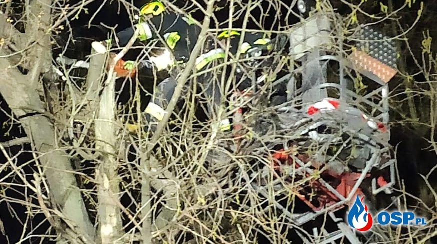 Wisząca gałąź nad jezdnią. OSP Ochotnicza Straż Pożarna