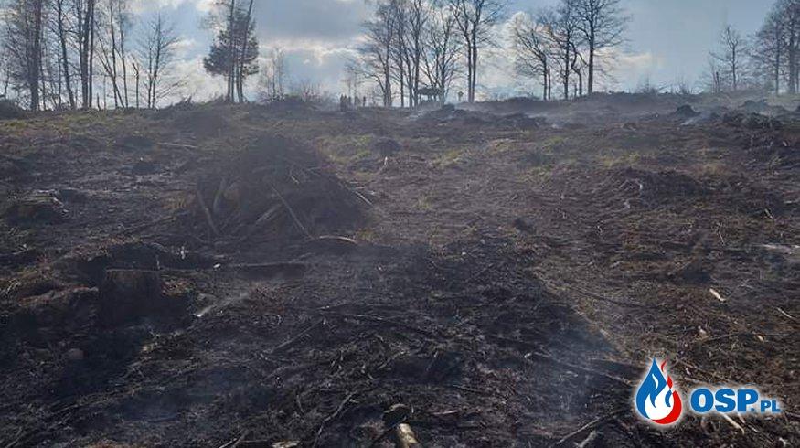 Pożar na Pograniczu Polsko-Czeskim OSP Ochotnicza Straż Pożarna