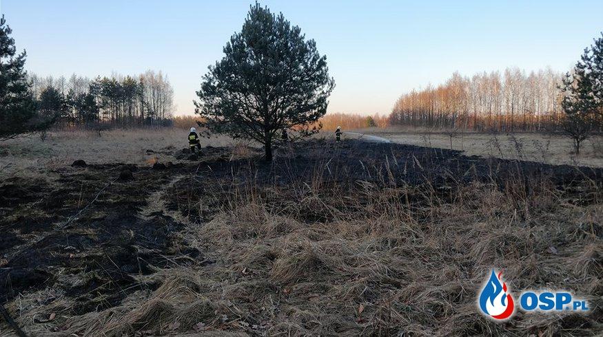 Pożar traw - ul. Chemików w Rozkochowie OSP Ochotnicza Straż Pożarna