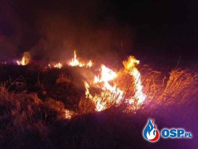 2019-04-07 godz.23:10 OSP Ochotnicza Straż Pożarna