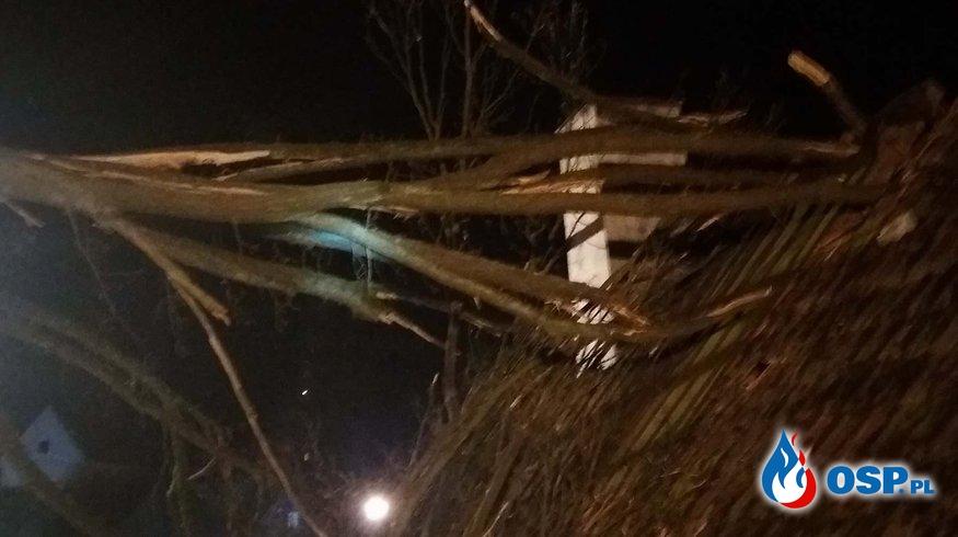 Drzewo spadło na budynek mieszkalny. OSP Ochotnicza Straż Pożarna