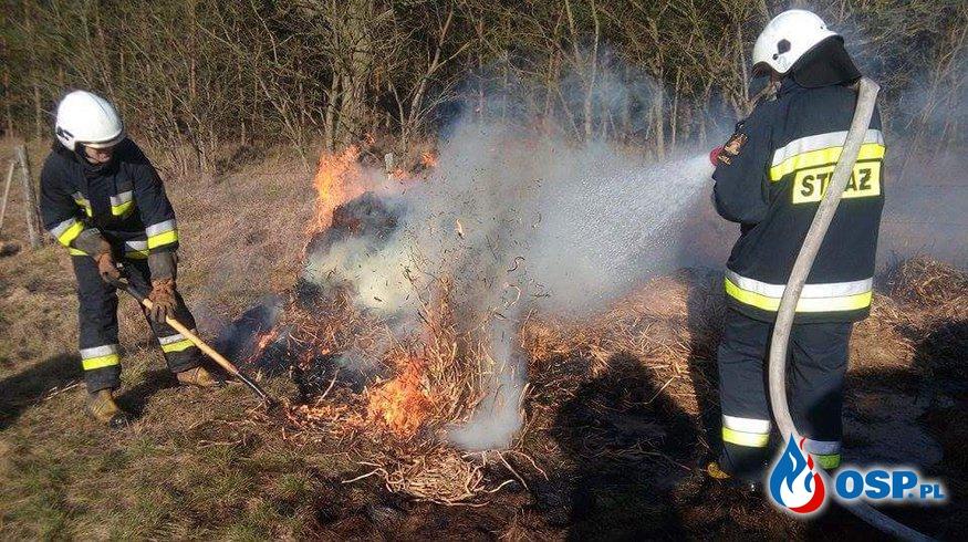 Pożar balotów słomy. OSP Ochotnicza Straż Pożarna
