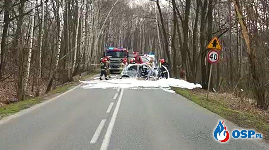 Samochód zapalił się po uderzeniu w drzewo. Kierowca zginął. OSP Ochotnicza Straż Pożarna