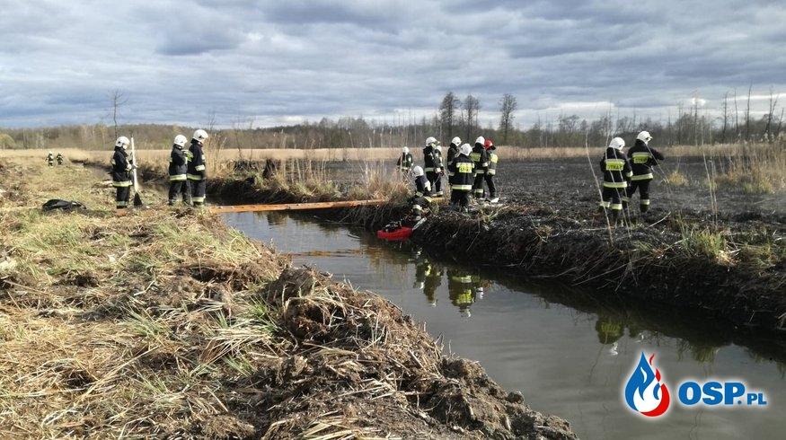 Pożar tataraków w miejscowości Woźniki OSP Ochotnicza Straż Pożarna