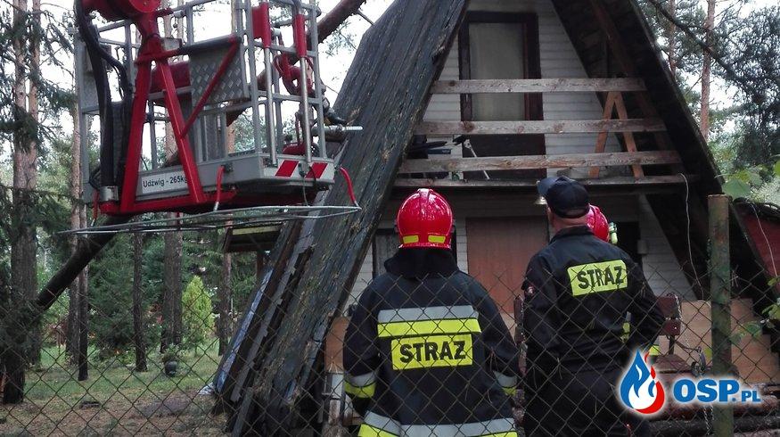 Drzewo i samochód na dachu OSP Ochotnicza Straż Pożarna