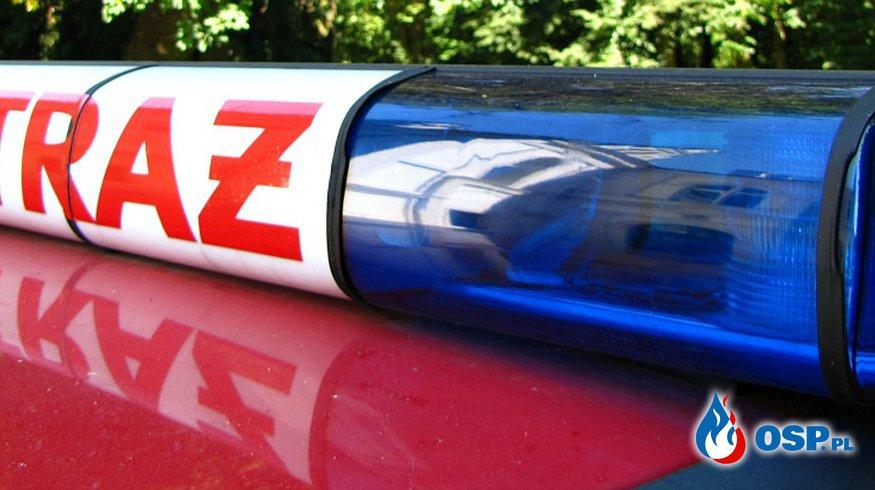 Zwisający konar nad jezdnią OSP Ochotnicza Straż Pożarna