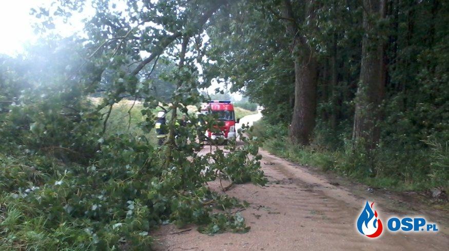 Gałęzie blokujące drogę OSP Ochotnicza Straż Pożarna