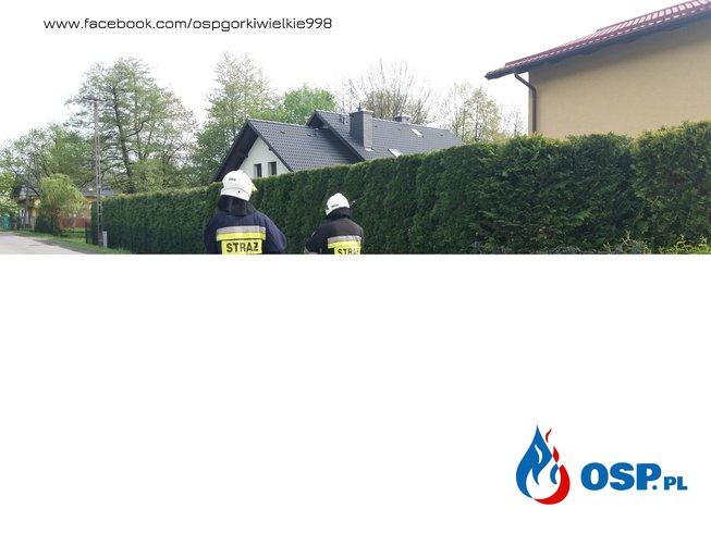 Uszkodzona linia telekomunikacyjna OSP Ochotnicza Straż Pożarna