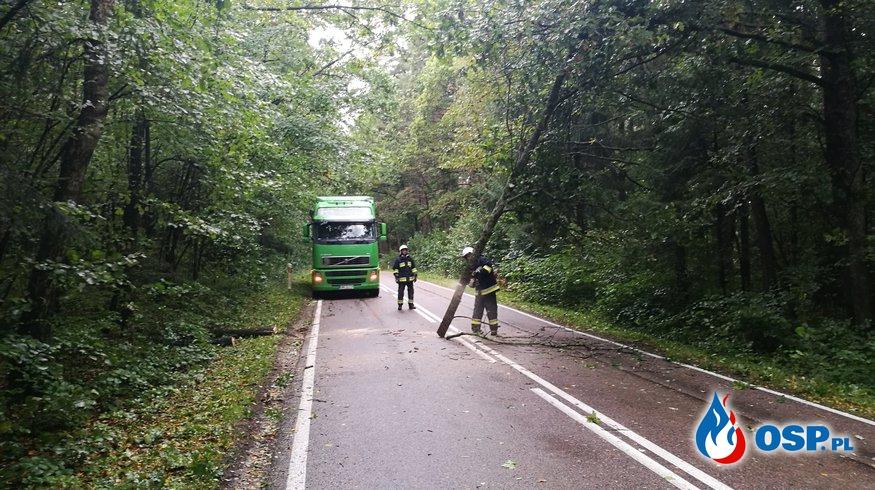 Powalone drzewa i zablokowane drogi OSP Ochotnicza Straż Pożarna