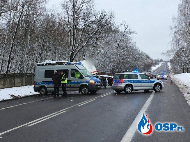 """Tragiczny wypadek w Dobrej. """"Cztery osoby nie miały czynności życiowych"""". OSP Ochotnicza Straż Pożarna"""