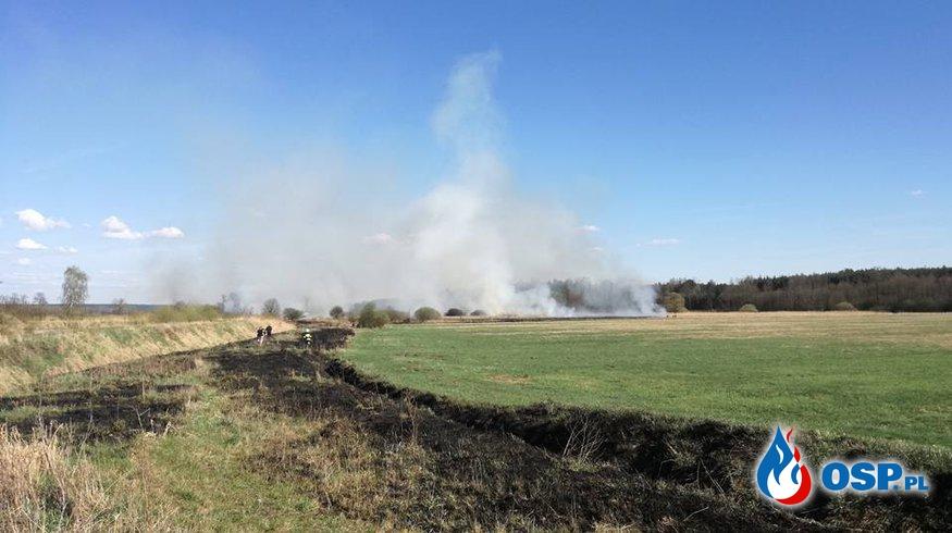 Stop wypalaniu traw !!! OSP Ochotnicza Straż Pożarna