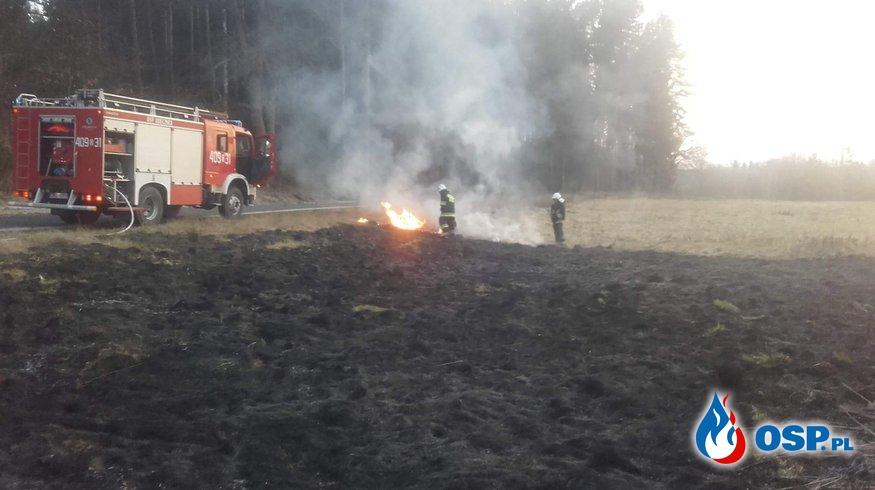 02.04 - Pożar nieużytków w Osieczowie OSP Ochotnicza Straż Pożarna