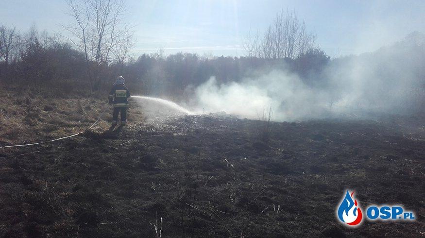 04.03- zabezpieczenie drogi i pożar nieużytków OSP Ochotnicza Straż Pożarna