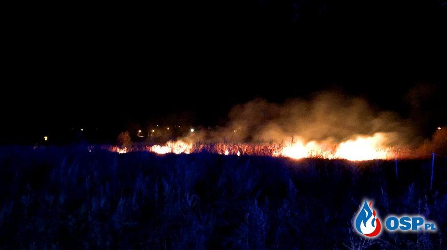 71/2021 Pożar trzcin w Mętnie OSP Ochotnicza Straż Pożarna
