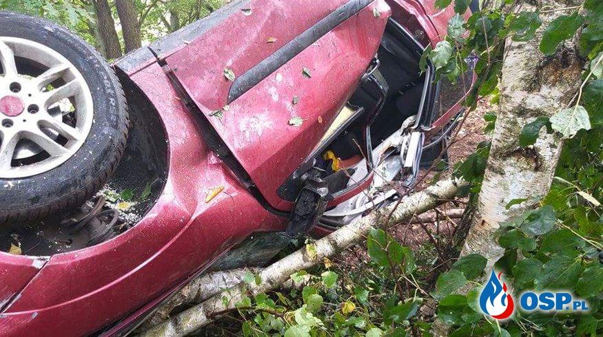 Powalone drzewo i wypadek w ciągu godziny. OSP Ochotnicza Straż Pożarna
