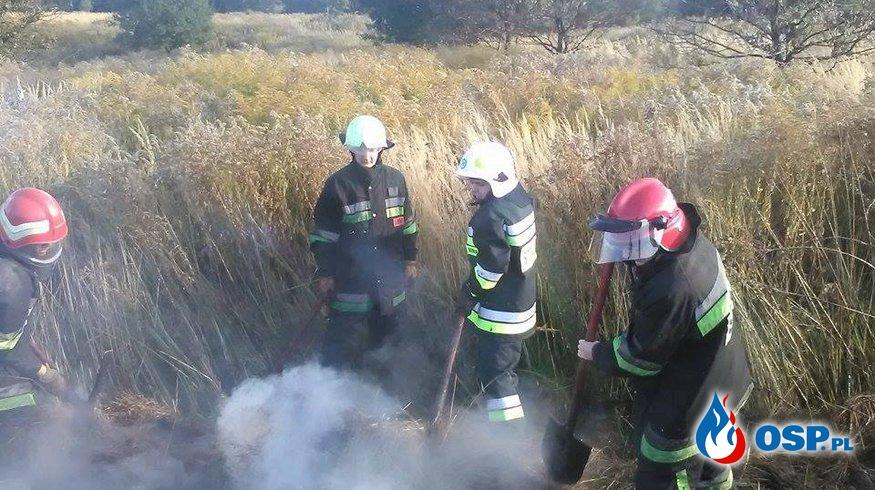 04.10.2015r. 15:40 Pożar traw i nieużytku rolnego OSP Ochotnicza Straż Pożarna