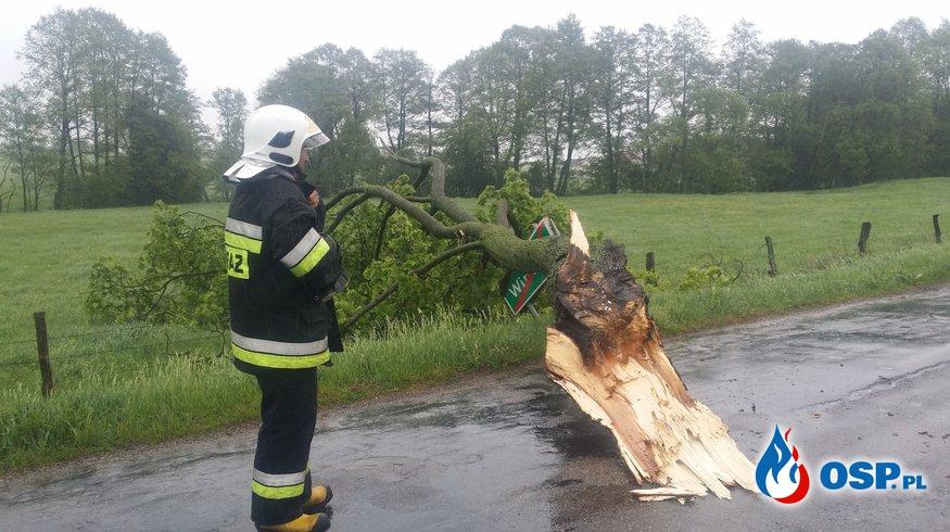 Powalony konar na drodze powiatowej (miejscowość Wirwajdy) OSP Ochotnicza Straż Pożarna